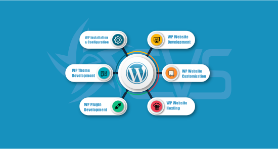 Certified WordPress Web Developer